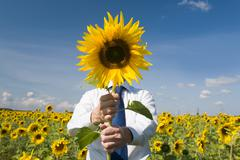 Image of man hiding face behind sunflower and standing in the field Stock Photos