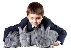 image of smiling boy holding grey rabbits and looking at camera - stock photo