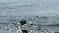 Surfers in water Stock Footage