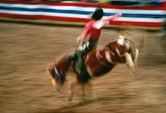 Rodeo, phoenix, arizona Stock Photos