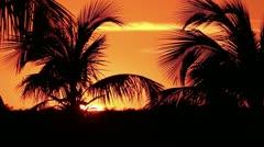Sunset Florida Keys Stock Footage