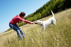 Photo of woman with her dog pulling branch Stock Photos