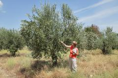 agronomy - stock photo