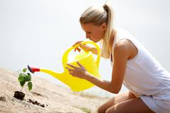 image of careful female watering green sprout outside - stock photo