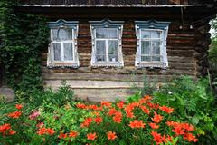 View of lilies in bloom by wooden house in village Stock Photos