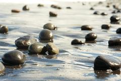 image of black oval stones on wet sandy shore - stock photo