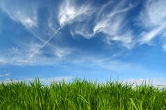 green grass under sky with fleecy clouds - stock photo