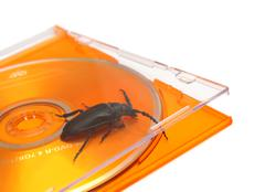 bug in software concept - stock photo