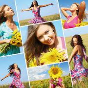 Collage made of photos with beautiful woman among sunflowers Stock Photos
