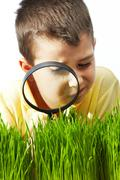 Photo of young boy looking at green grass through magnifying glass Stock Photos