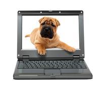 Small laptop Stock Illustration