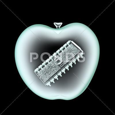 Stock Illustration of Digital apple x-ray
