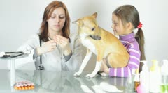 Veterinarian is going to make an injection of puppy Stock Footage