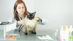 At a reception at the vet Stock Footage