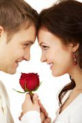 close-up of two young people looking at each other and holding a rose - stock photo