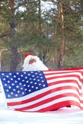 santa claus holding american flag in winter forest - stock photo