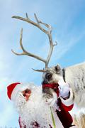 santa claus stroking his reindeer - stock photo