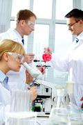 Working in lab Stock Photos