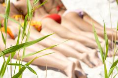 Image of green grass on the beach with sunbathing girls at background Stock Photos