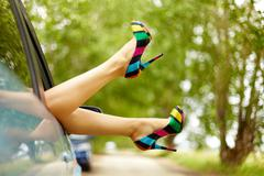 Photo of nice legs of elegant woman stuck from car window Stock Photos