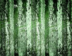 green tone old wood wall ceiling and floor for web page background - stock photo