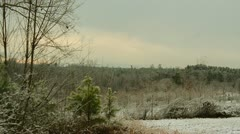 Snowy scene on trees and mountain background 03 Stock Footage