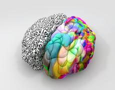 Left and right brain concept perspective Stock Illustration