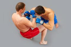 Sparring of two muscular man fighting vigorously Stock Photos