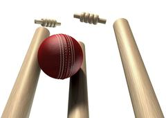 Cricket ball hitting wickets front isolated Stock Illustration