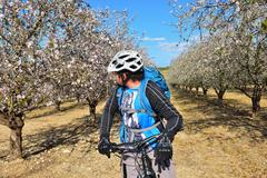 bicyclist admires blossoming almond - stock photo