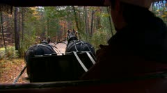 Carriage Ride in the Country POV Stock Footage