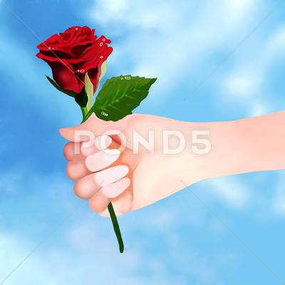 Stock Illustration of Holding Beautiful Red Rose