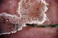 dirty grunge surface - stock photo