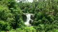 Waterfall in the tropic jungle Bali Indonesia Footage