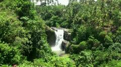Waterfall in the tropic jungle Bali Indonesia Stock Footage