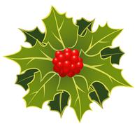 christmas holly with berry - stock illustration