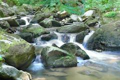 stones into the forest stream water - stock photo