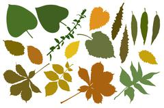 leafs color - stock illustration