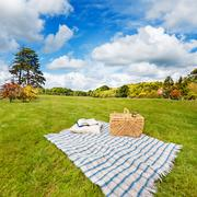 Picnic blanket & basket in sunny field Stock Photos