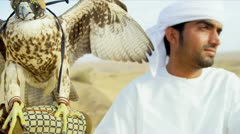 Close Up Male Arab Displaying Trained Saker Falcon Stock Footage