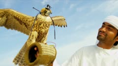 Middle Eastern Male Falconer with Bird of Prey - stock footage
