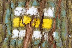 tree bark texture with turistic sign - stock photo