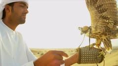 Trained Saker Falcon Balanced Arabic Male Owners Glove Stock Footage