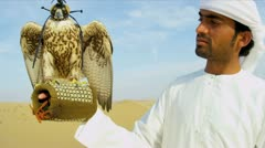 Bird of Prey with Middle Eastern Owner - stock footage