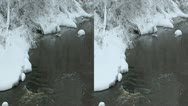 River in winter 6LR Stock Footage