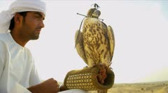 Middle Eastern Falconer Hooded Bird of Prey Falco Cherrug - stock footage