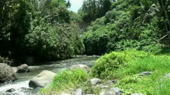 Tropical waterfall stream in jungle landscape Bali Indonesia Stock Footage