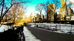 Time Lapse of Central Park with Tourists walking in snow Stock Footage