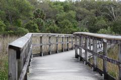Bridge over the everglades Stock Photos