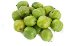 bunch of kiwi berries - stock photo